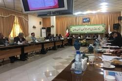 افزایش ۸۸ درصدی پرداخت تسهیلات ازدواج در استان همدان