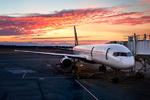 ہندوستانی طیارے میں کیبن پریشر کم ہونے سے 30 مسافر زخمی