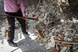 کارخانه بازیافت کاغذ در ایلام راه اندازی می شود