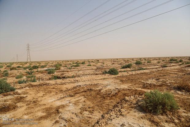 ۲۵ هزار هکتار از اراضی استان البرز کانون ریزگرد است