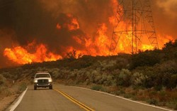 رئيس وزراء اليونان عن حرائق الغابات: أتحمل كامل المسؤولية