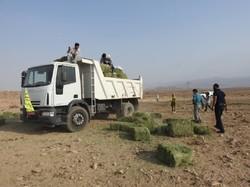 توزیع دو تن علوفه نذرطبیعت درمنطقه حفاظت شده بهرام گور