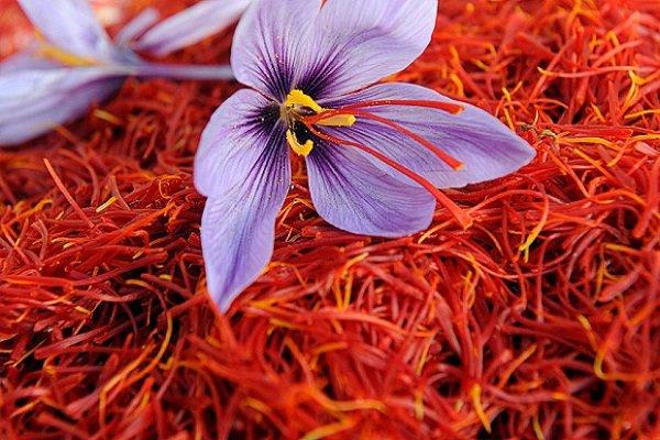 معامله بیش از ۲ تن زعفران در بورس کالا