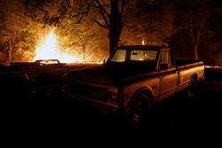 Tunceli'de 3 gündür süren yangın söndürüldü