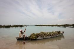 استفاده از منابع آب نامتعارف برای تامین نیاز صنعت ضروری است