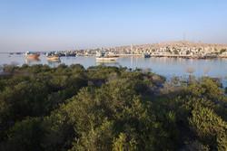 راه اندازی سه ستاد گردشگری دریایی در سواحل مکران