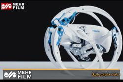 فلم/ روبوٹ حشرات کی ساخت