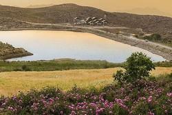 استقبال گردشگران از روستای زیبای لاله زار
