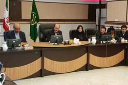 نوسازی واحدهای مرغ و تخم مرغ در استان قزوین جدی گرفته شود