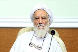 «محمدنبی حبیبی» همراه همیشگی روحانیت بود