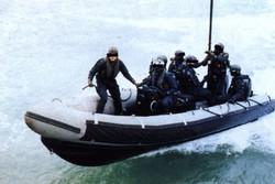 نیروی دریایی ویژه بریتانیا