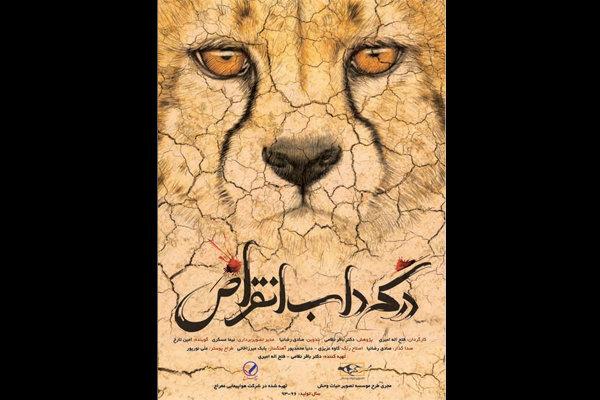 مستند «در گرداب انقراض» در بخش نهایی فیلم روز جهانی حیات وحش