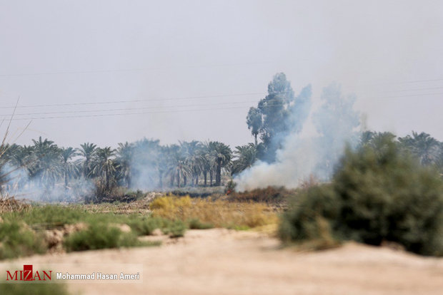 Raging fire burns 23,000 ha of Hour al-Azim wetland