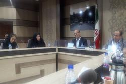 ۱۳۰ پرونده احداث برج باغ در شمال تهران متوقف شده است