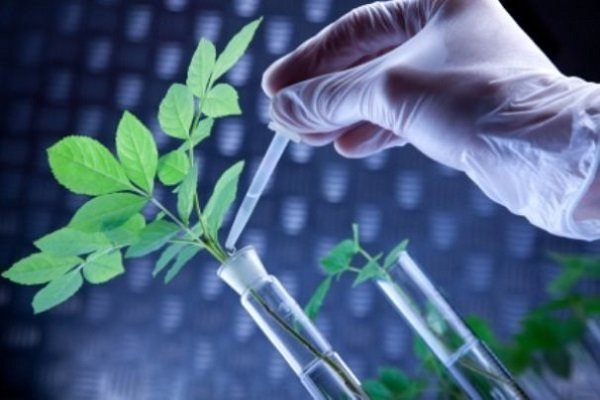 Latest biotech industrial, research achievements to be unveiled