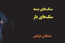 انتشار دفتر شعری ایرانی در نروژ