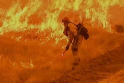 تلفات آتشسوزی در کالیفرنیا به ۸۰ نفر رسید/ هزار نفر مفقود هستند