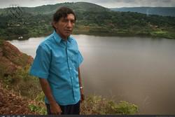 شیوع تب طلا در آمریکای جنوبی