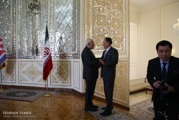 Iran, North Korea FMs hold talks in Tehran