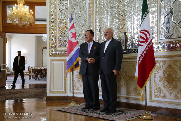 Iran, North Korea FMs hold talks in Tehran
