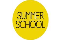 مدرسه تابستانه مطالعات فرهنگی برگزار می شود