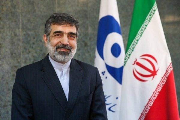 منظمة الطاقة الذرية الايرانية: قادرون على تخصيب اليورانيوم بنسبة 40 و60 بالمائة
