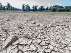 پیش بینی هوا در تابستانهای آتی/ موج گرما به افراد بیشتری می رسد