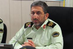 سردار محمودی
