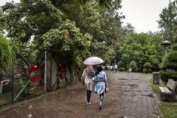 کاهش دمای هوا در آذربایجان شرقی/ احتمال وزش تند باد و بارش باران