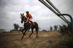 مسابقات اسب دوانی منطقه جنوب کشور در یاسوج برگزار شد