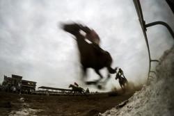 """مسابقات ركوب الخيل في مدينة""""بندرتركمن"""" / صور"""