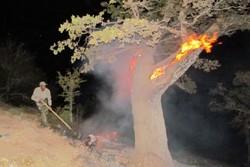 استمرار آتشسوزی در جنگلهای منطقه «ملهکوه» پلدختر