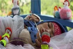 جایزه بهترین فیلم جشنواره مستند آمریکا برای «عروسک کاموایی»