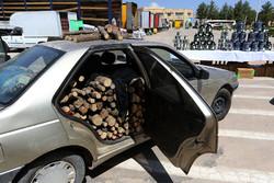 ۲۵ تن چوب قاچاق در مرودشت کشف  شد