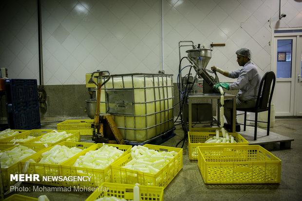 Egg production farm