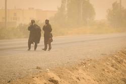 طوفان سیستان ۶۵ نفر را روانه بیمارستان کرد