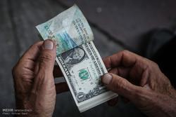 پتروشیمیها باز هم عرضه ارز را کم کردند/ چرا شبهدولتیها هشدارهای دولت را جدی نمیگیرند؟