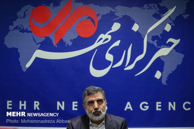 AEOI spox says Iran might reconsider JCPOA commitments