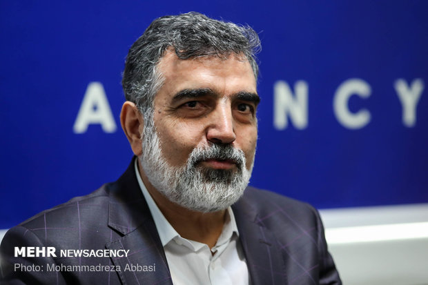 US sanctions won't make Iran rethink its nuclear plans: AEOI spox