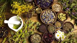 Tehran to host traditional medicine, medicinal herbs festival