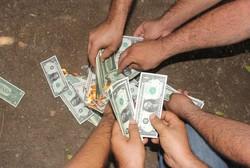 فروش دلار برای حمایت از لیر