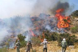 آتش سوزی در جنگل های سردشت مهار شد