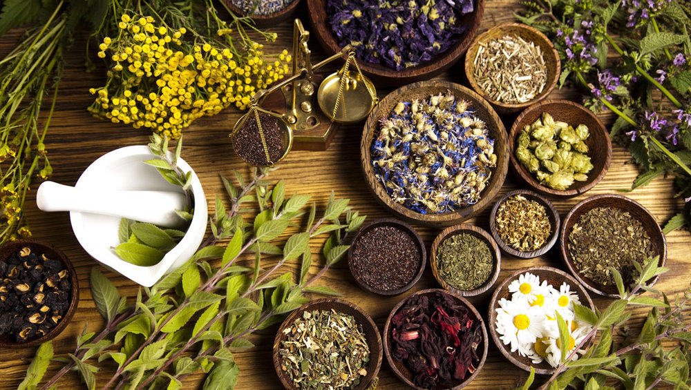 Image result for traditional medicine