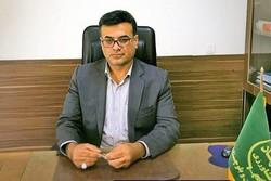 مجتبی پیری/رئیس سازمان جهاد کشاورزی سیستان و بلوچستان