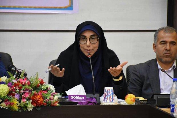 ٢۶٠ میلیارد ریال به دهیاری های جنوب استان بوشهر تخصیص یافت