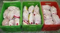 کشف محموله مرغ منجمد قاچاق در پایانه مرزی شلمچه خوزستان