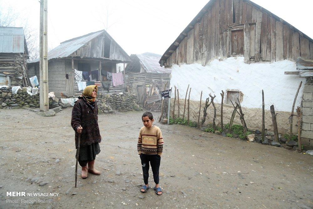 بوی خوش صفا در زندگی روستایی