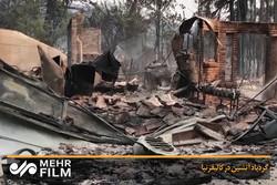 فلم / کیلیفورنیا میں آتشیں گرد و غبار