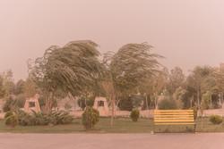 طوفان و گرد و غبار شدید در شهرستان های شرق کرمان