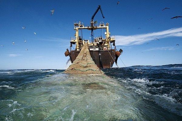 """الحرس الثوري يحتجز 7 سفن للصيد في مياه منطقة """"جاسك"""" جنوبي ايران"""